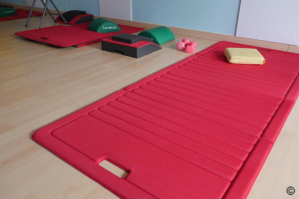 Exercices de musculation du dos avec matériel